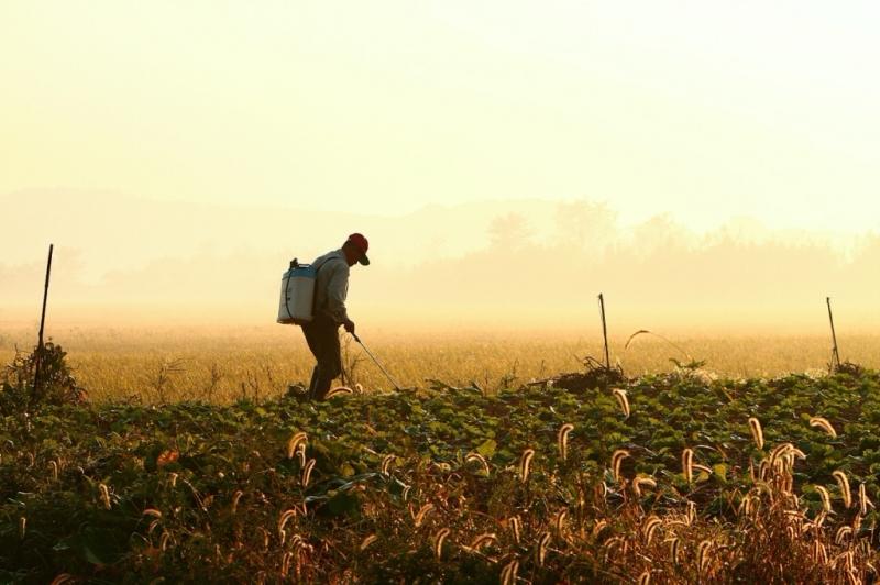 농부.jpg