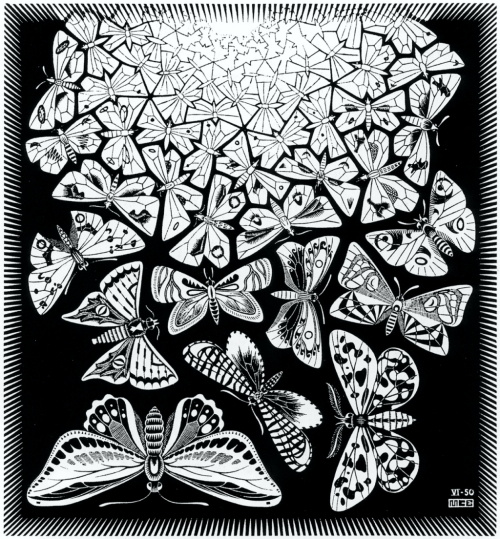 m_c_escher_selected_butterflies.jpg