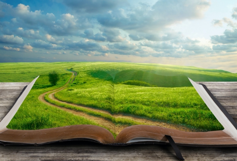 book and road.jpg