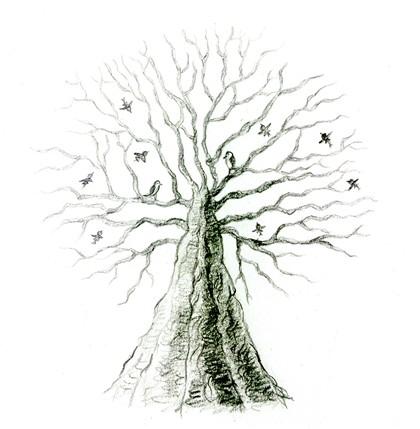 난나무.jpg